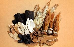 Fitoterapia China, el uso de las hiervas medicinales por los chinos