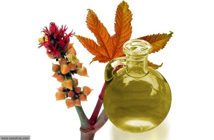 Aceite de Ricino para el Nervio Ciático